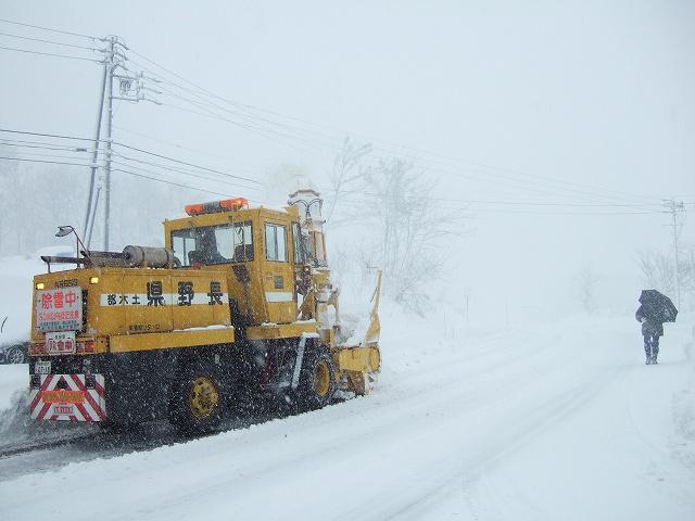 2011年1月